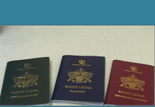 Citizenship by Investment Program (CIP)