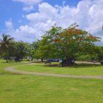 Camerhogne Park