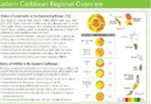 coral reef report cards