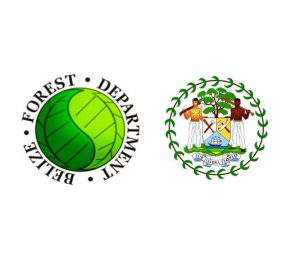 Forest Department Belize