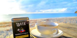 Taste Tea Naturals