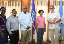 UN Regional Steering Committee