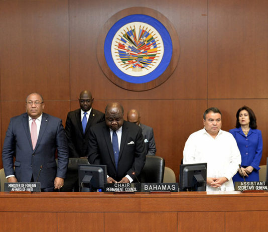 OAS Observation Mission to electoral process in Haiti