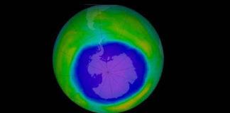 Ozone Day