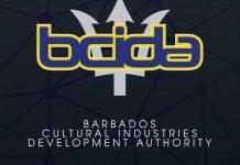BCIDA