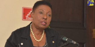 Minister Grange Condemns Killing of Pregnant Woman and Children.