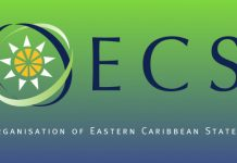 OECS Authority