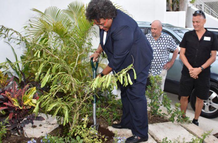 Mia Mottley - Barbados Prime Minister