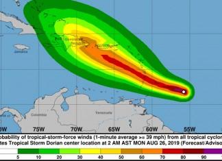 Tropical Storm Dorian #8